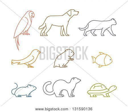 Colored line group of pets. Silhouettes animals isolated on white. Vector icons parrot dog mouse and hamster. Outline silhouette hamsters canaries cats and turtles.