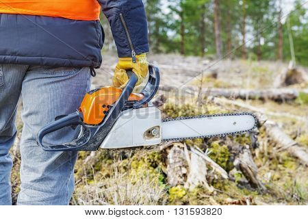 Lumberjack with chainsaw in forest in summer day