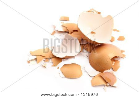 Chips Of The Crushed Egg Shell