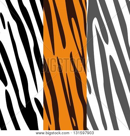 Set of colorful skin textures of zebra and tiger vector illustration