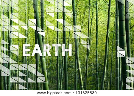 Earth Day Environment Conservation Environmentalist Concept poster