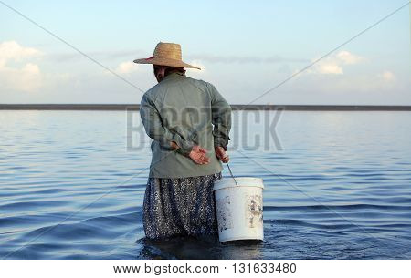 Mauritian woman walking in the lagoon looking for sea snails