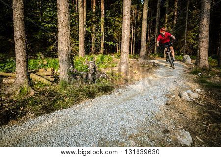 Mountain biker riding on bike in spring inspirational forest sunset landscape. Man cycling MTB on enduro trail path. Sport fitness motivation and summer inspiration. Rider mountain biking in woods.