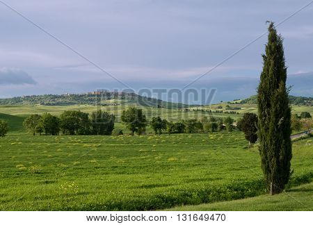 Tuscan landscape of Val d'Orcia with town of Pienza in the background