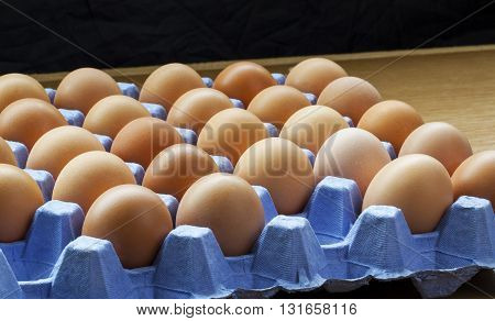 Panorama of whole fresh uncooked eggs on tray, still in the shell.