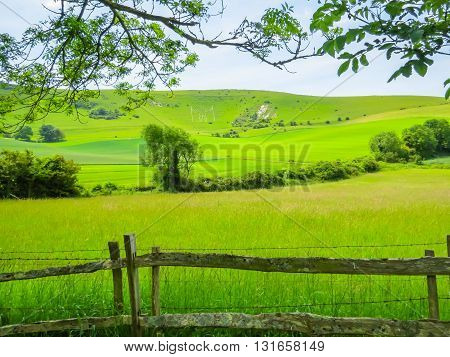 Fence in the field. Landscape of East Sussex, England