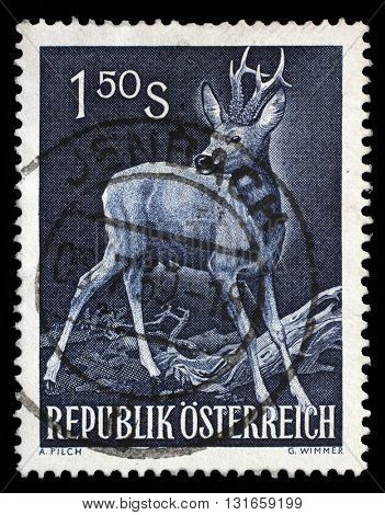 ZAGREB, CROATIA - SEPTEMBER 09: a stamp printed in the Austria shows Roe Buck, Roe Deer, Capreolus Capreolus, Wild Animal, circa 1959, on September 09, 2014, Zagreb, Croatia