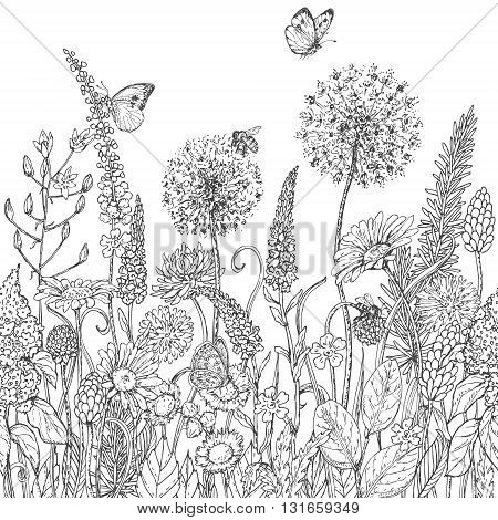 Hand drawn seamless line pattern with wildflowers and insects. Black and white doodle wild flowers bees and butterflies for coloring. Floral elements for decoration. Vector sketch.