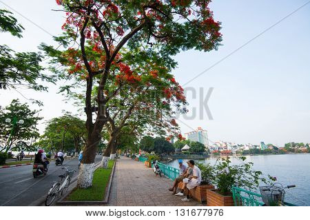 HANOI, VIETNAM, May 21, 2016: People relax in Hanoi street in summer with blooming flamboyant flowers.