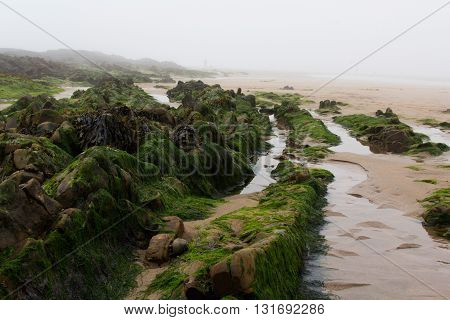 Water Left Stranded In The Rocks By Low Tide