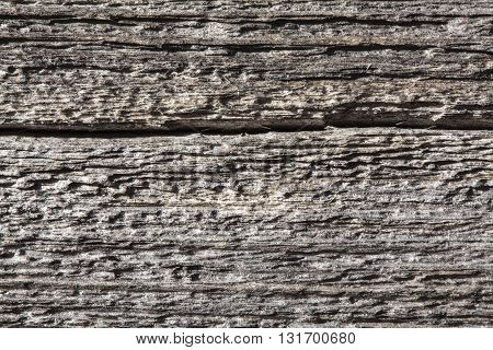 Closeup, macro of a windswept, weathered wooden background. An old cracked wooden board.