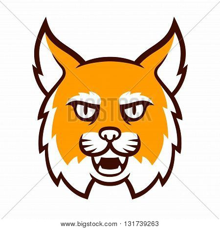 Angry cartoon bobcat mascot head. Comic style wildcat islolated illustration.