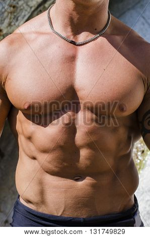 Torso of muscular man shirtless outside in the sun, showing ripped abs and pecs muscles