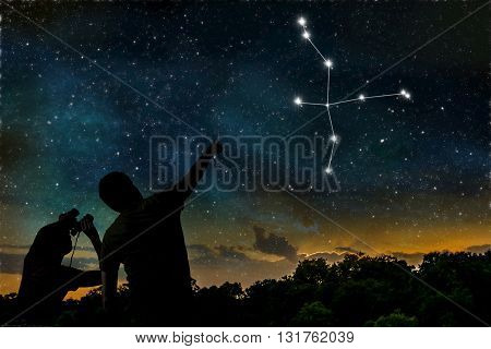 Cygnus Or Swan Constellation On Night Sky. Astrology Concept. Si