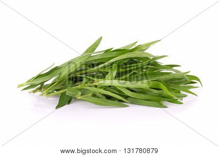 Tarragon Herbs Close Up Isolated On White