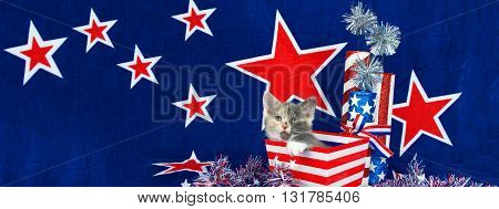 Patriotic calico kitten sitting in red and white stripped box blue background with red stars outlined in white. Sized to fit a popular social media cover image placeholder