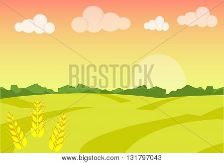 Wheat field ripe grow agriculture. Farm landscape. Farm landscape illustration. Field wheat background. Farm sunrise background. Vector illustration