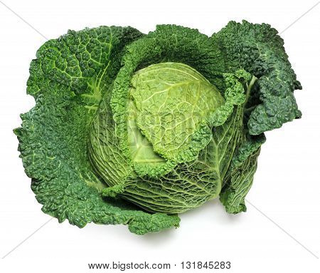 Fresh, raw savoy cabbage, isolated on white.