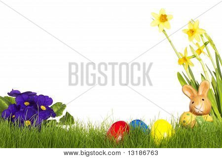 small easter bunny with easter eggs daffodil and primula