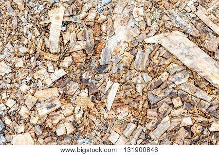 close up scraper spokeshave sapele exotic hardwood.