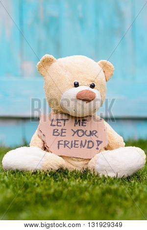 Teddy Bear Holding Cardboard With Information Let Me Be Your Friend