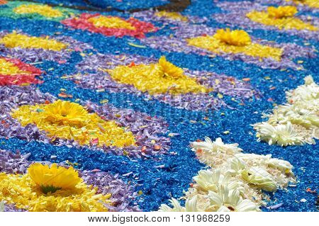 Detail of a flower decorated carpet during the Corpus Christi celebration