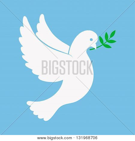 Dove of peace vector illustration. Flying dove with a sprig in its beak. White dove in a flat style. Dove symbol isolated from background. Bird dove icon.