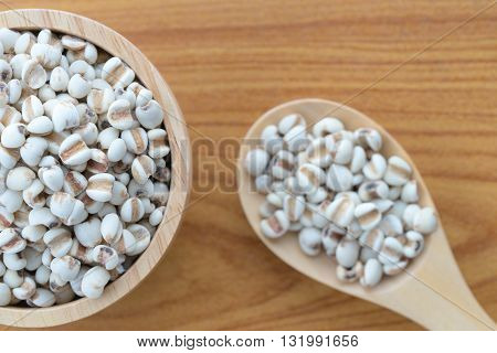 Millet rice millet grains in bowl. Top view