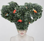 Artistic surreal portrait of a girl with a huge headgear of foliage and colorful birds on it isolated on light grey background poster