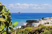 Coastline of Stromboli with prickly pear and white houses; Strombolicchio stack in the background poster