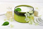 Fresh plant-based cosmetic. White skincare cream in cosmetic container, fresh flowers plant leaves, essential oil, cotton pads. poster