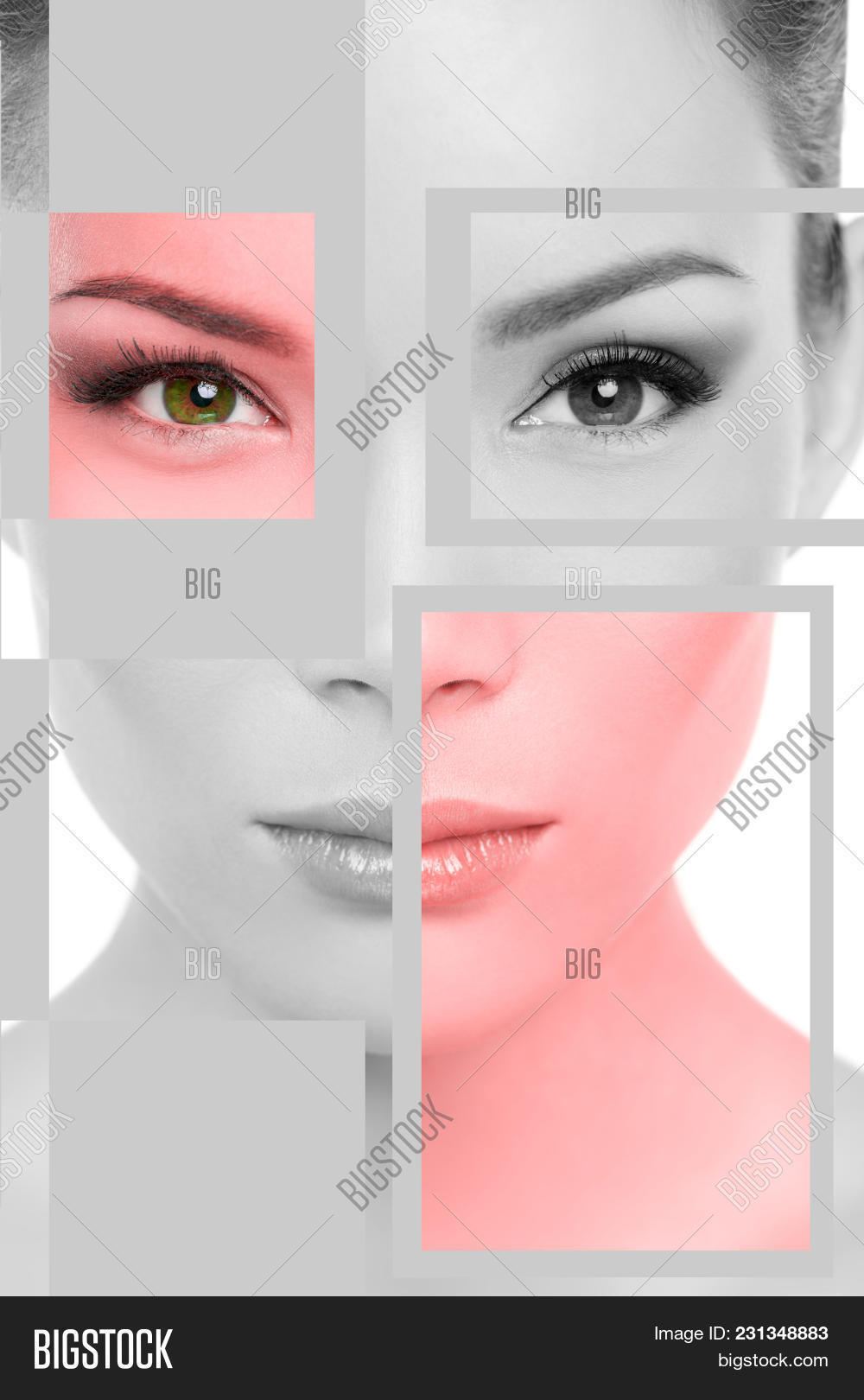 Asian Woman Face Image & Photo (Free Trial) | Bigstock