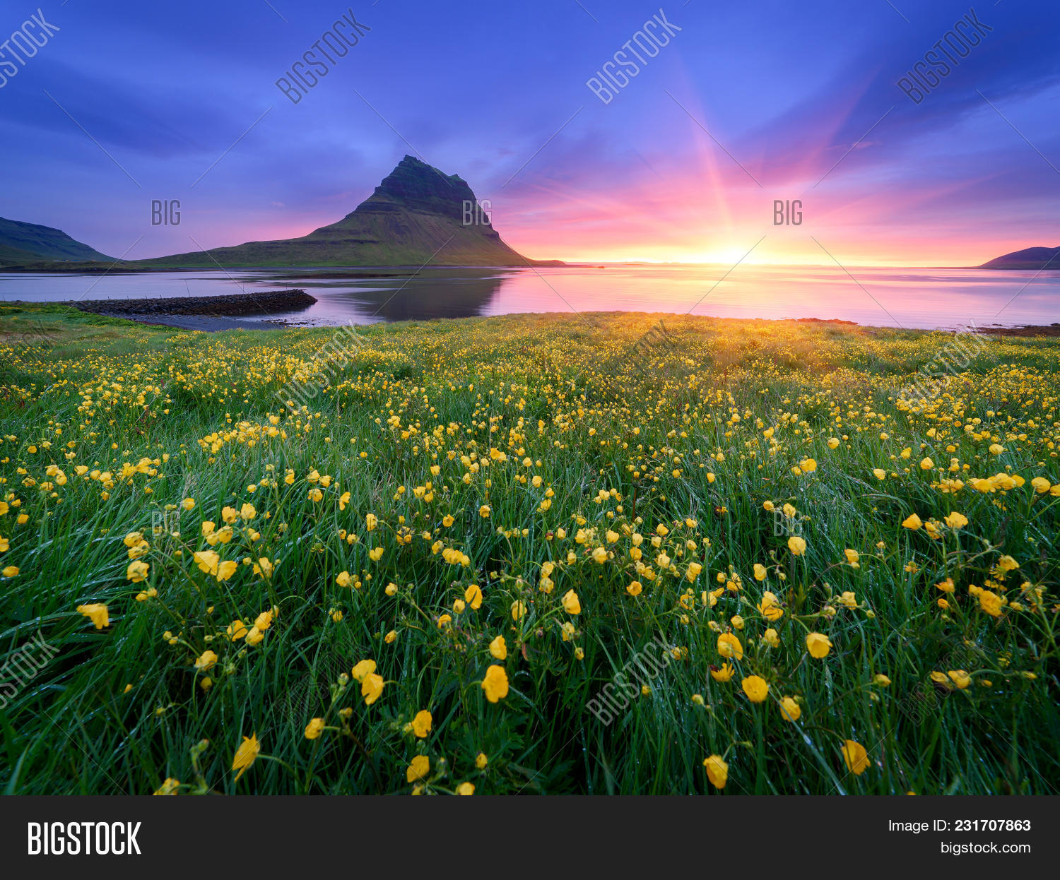 Landscape beautiful image photo free trial bigstock landscape with a beautiful sunrise and the mountain yellow flowers in the lush grass in izmirmasajfo