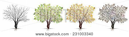Four Seasons Of Tree Concept. Vector Background