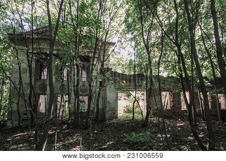 Abandoned Ruined Overgrown Church In The Wood, Drezgalovo, Lipetsk Region.