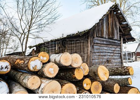 Timber For Construction Of The House Is Near A Ramshackle Hut