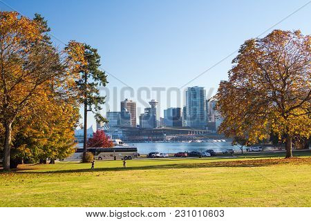 Towers Of A Big City Appearing In Between Of Autumn Colorful Trees Of Public Park, Water Divides  Pa