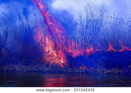 Disaster. Burning Reeds In The Spring In The Delta Of The Volga In The Astrakhan Region. Smoke From