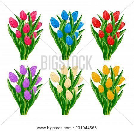 Spring Blooming Tulip Flower Set Isolated On White Background  Illustration. Floral Spring Design El