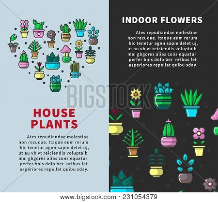 House Plants And Indoor Flowers Promotional Vertical Posters. Natural Indoor Green Decorations With
