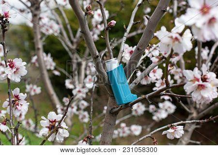 Allergy Medicine On A Tree Full Of Flowers.
