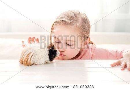 Little girl kissing guinea pig