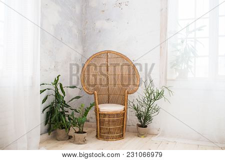 Wicker Doll Chair And A Lot Of Greenery In The Pot In The Room With Grey Walls. Rattan Chair And Fur