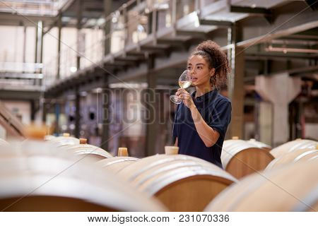 Young woman wine tasting in a wine factory warehouse