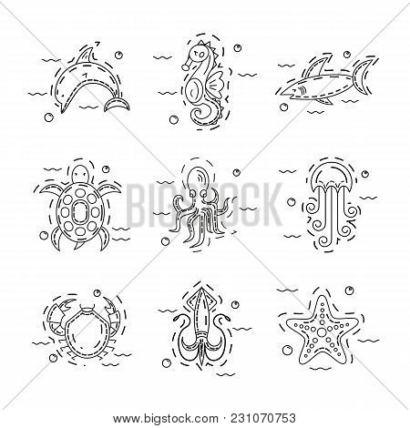 Vector Set Of Sea Animals Made In Modern Thin Line Stile On White Background. Starfish, Dolphin, Sea