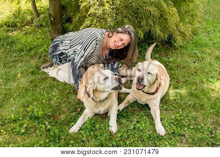 Happy Woman With Two Labrador Dogs On Grass In The Park.