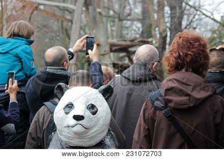 Zoo Visitors On Panda Photo Safari In Berlin Zoo, Germany