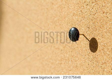 Black Plastic Pushpin On A Cork Board