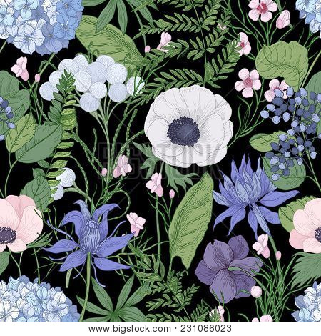 Botanical Seamless Pattern With Beautiful Wild Blooming Flowers Hand Drawn On Black Background. Back