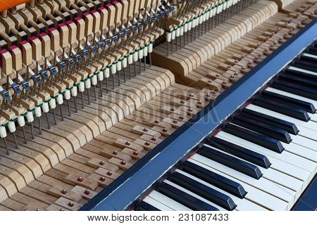 Open Piano Keys Close Up. Musical Instrument